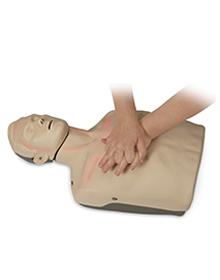 Brayden CPR Manakin